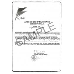 Vaterschaftsanerkennung Urkunde DE Deutsch Deutschland Österreich Schweiz