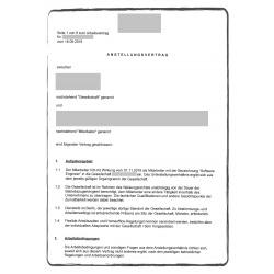 Anstellungsvertrag DE